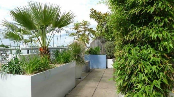 Garden With Planters And Ornamental Grasses Terrace Garden With Planters And Ornamental Grasses : Wonderful Roof Terrace GardenTerrace Garden With Planters And Ornamental Grasses : Wonderful Roof Terrace Garden