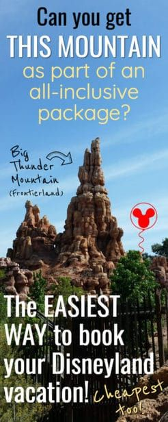 All-Inclusive Disneyland Vacation Packages