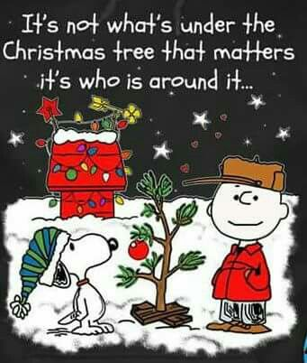Pin by Jane Hunt Aka Granny on CHARLIE BROWN | Christmas ...