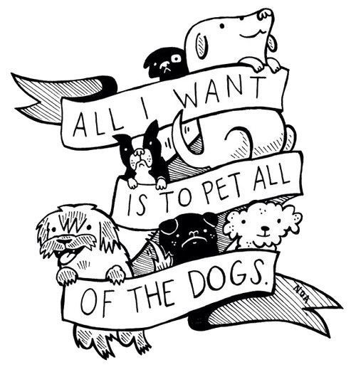 All I Want Is To Pet All Of The Dogs Dogs Dog Love Crazy Dog