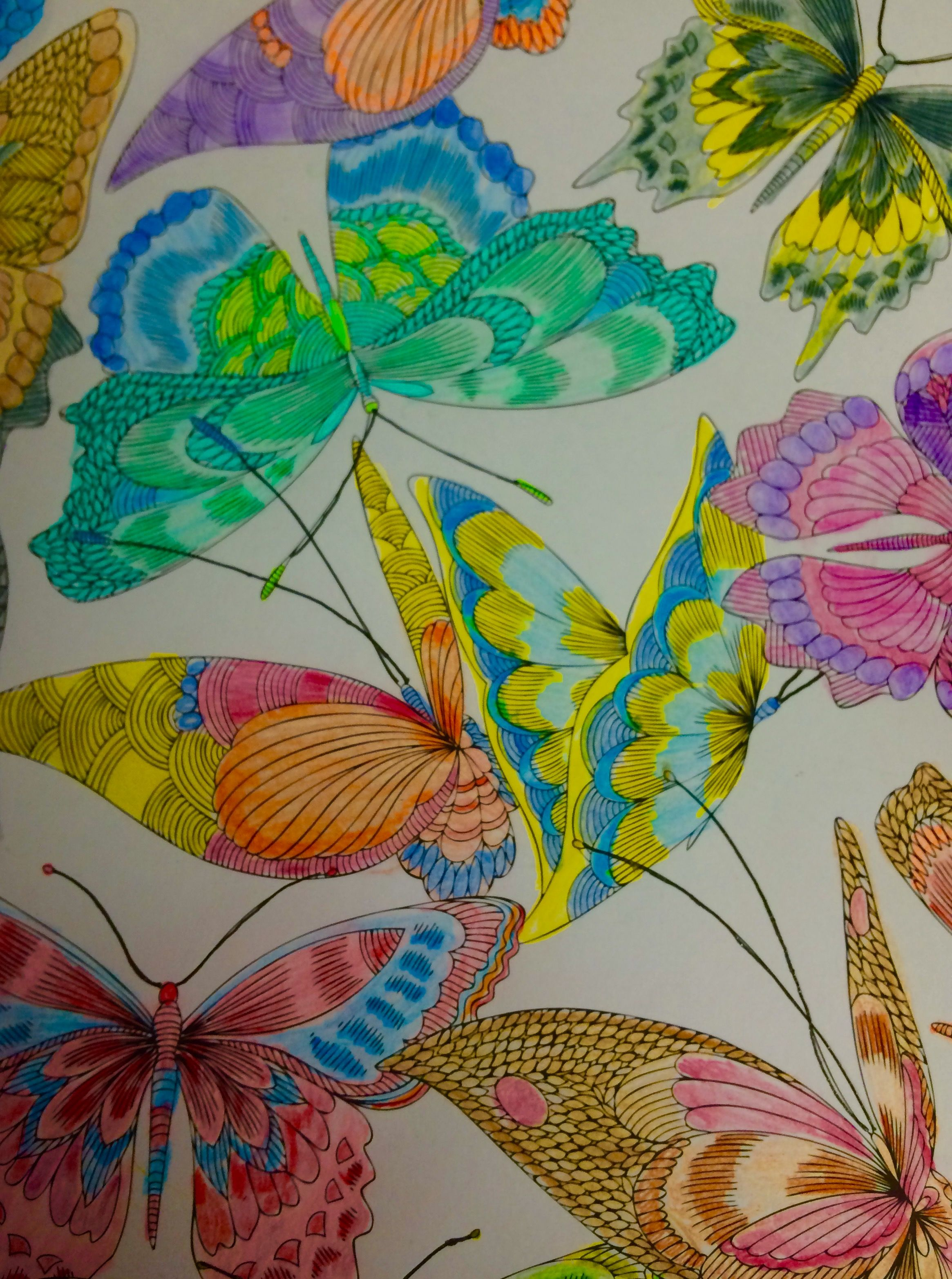 From Tropical World Coloring Book colored by Ella | ENJOY THIS ...