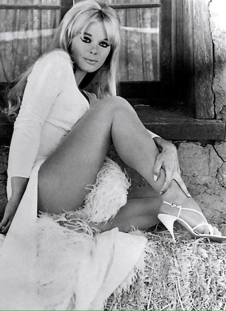 Picture of Elke Sommer | Vintage movie stars, Classic hollywood actresses,  Hollywood actresses