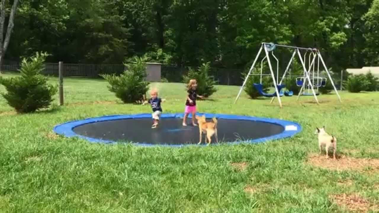 diy in ground trampoline youtube get outta here pinterest