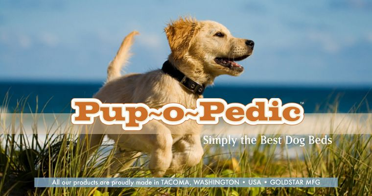 Pup O Pedic Best Dog Bed You Ll Ever Own Made Locally By Me In
