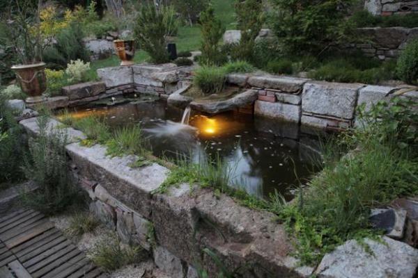 Bassin moderne | Jardin | Pinterest