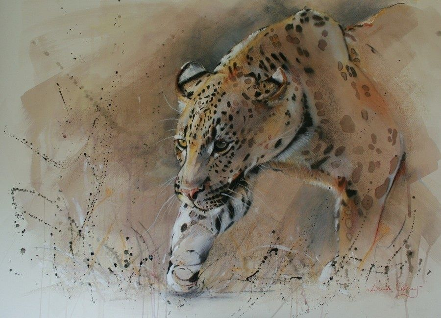 Lucinda Coldrey, Front Lit Animals, Buy paintings