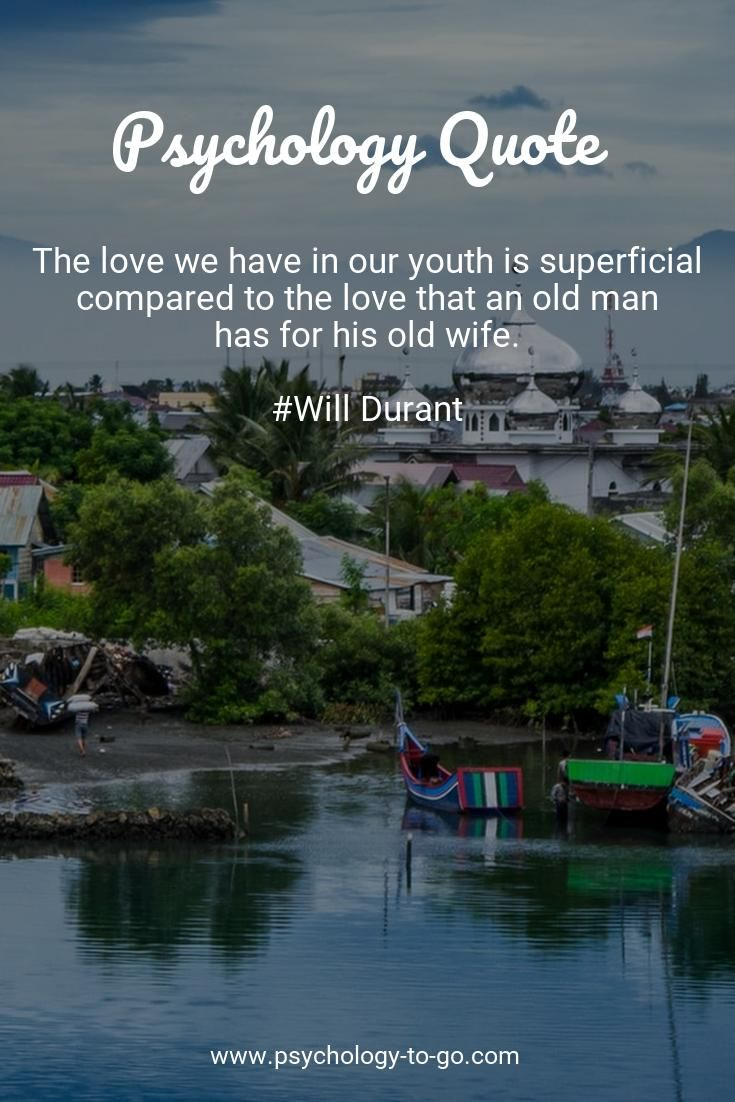 Do you find yourself wondering how to face the ups and downs of life? Discover not only information that is accurate, understandable, and actionable but also helpful tools provided by Psychology To Go! Or just enjoy 288+ Love Quotes from Will Durant like The love we have in our youth is superficial compared to the love that an old man has for his old wife. #lovewhatyoudo #lovecats #lovemyjob