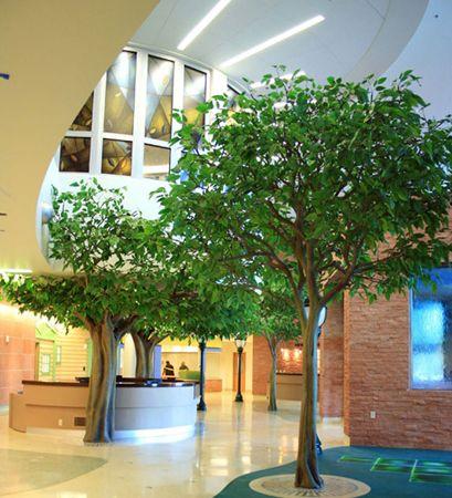 Cardon Children S Medical Center Mesa Az Rainforest Inspired Trees Tree Inside House Healthcare Design Children S Medical Center