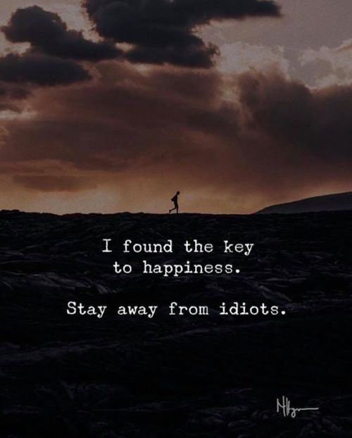 I Found The Key To Happiness Stay Away From Idiots Via Lesson Quotes Life Lesson Quotes Words Quotes