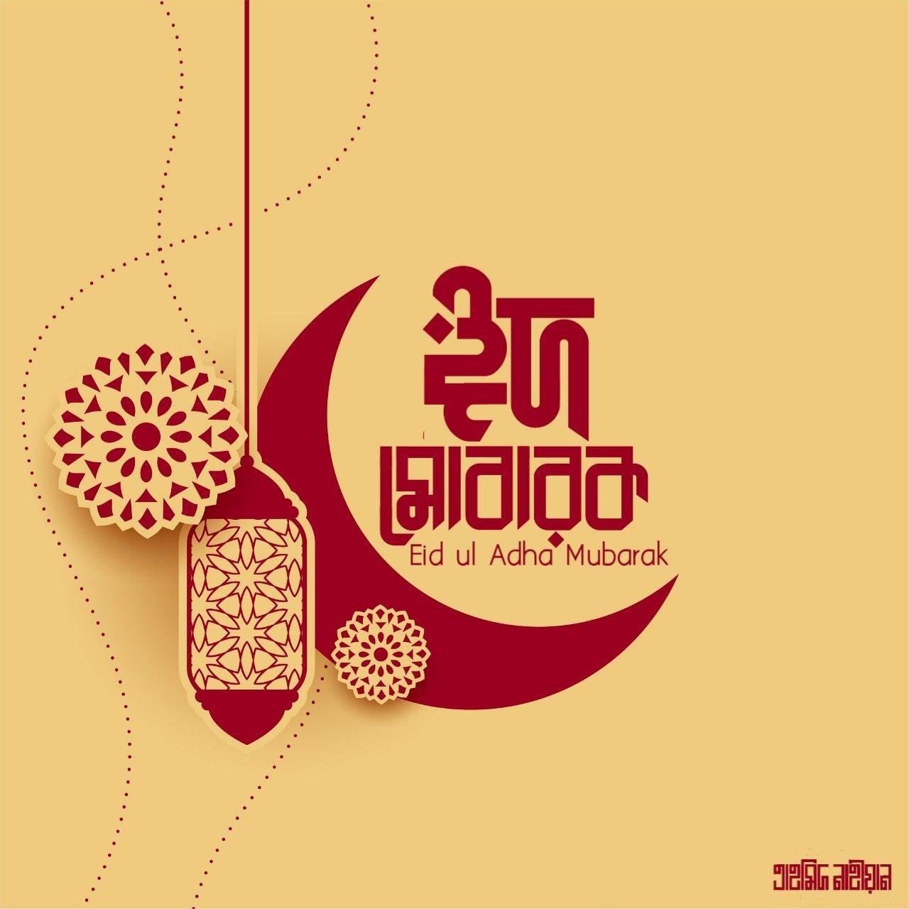 Pin On Bangla Lettering