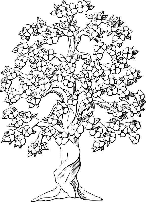 Flowering Tree Black White Sticker By Greengoodnich In 2021 Tree Coloring Page Flower Coloring Pages Tree Drawing
