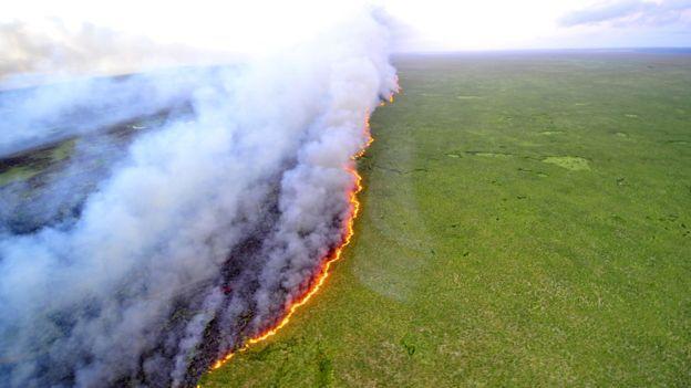 A Polemica Decisao De Temer De Abrir Uma Area Gigante Da Amazonia