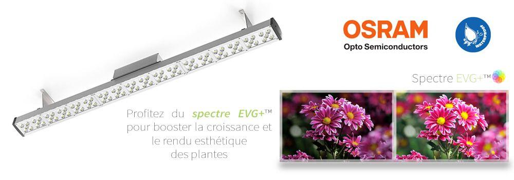 Spectre Horticole Led Pour La Mise En Valeur Et La Croissance De Plantes Vertes Greenvisualed Floraled Plante Mur Vegetal Aquaponie