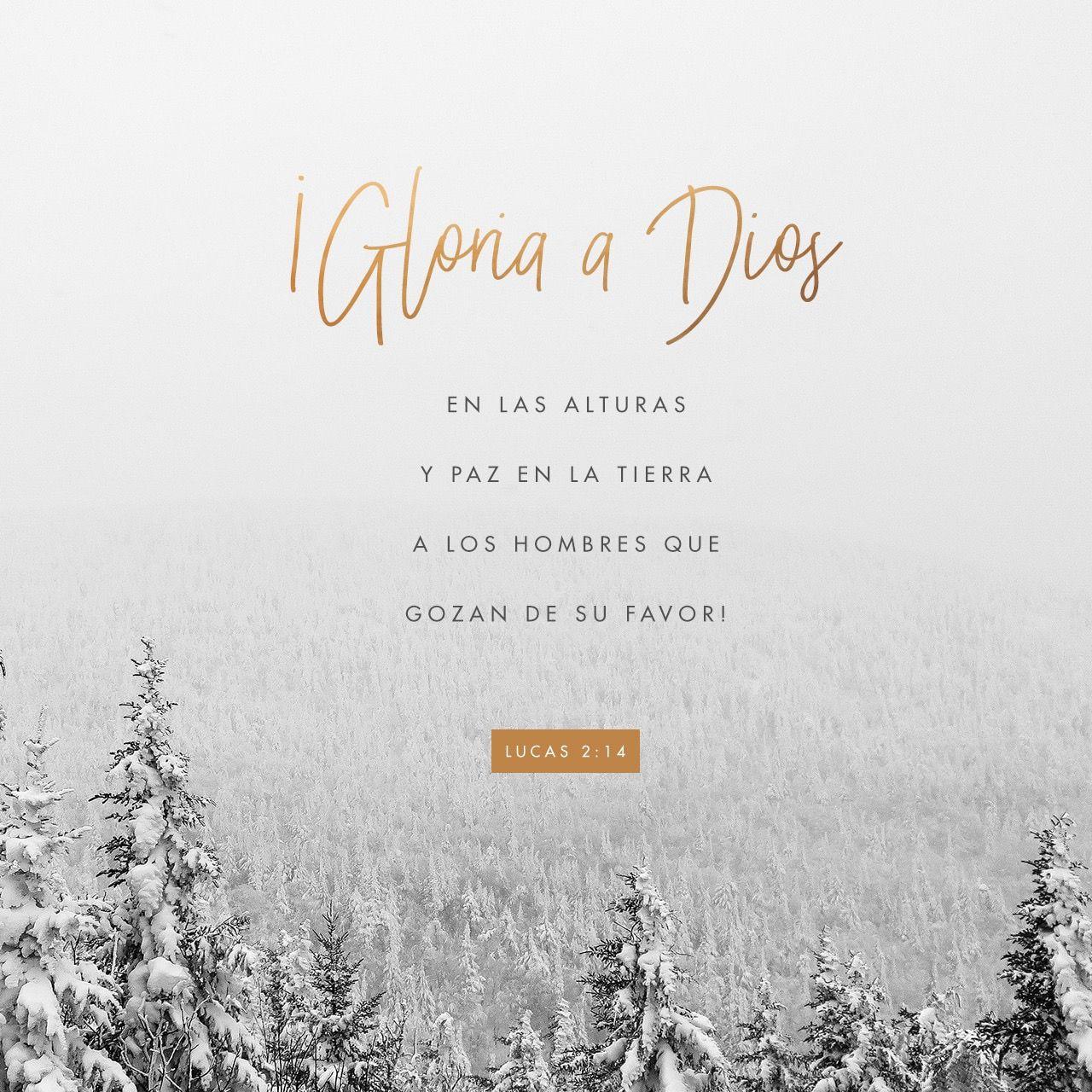 Pin En Citas Biblicas Para El Espíritu
