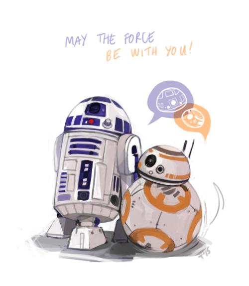 HAPPY STAR WARS DAY 2015!!