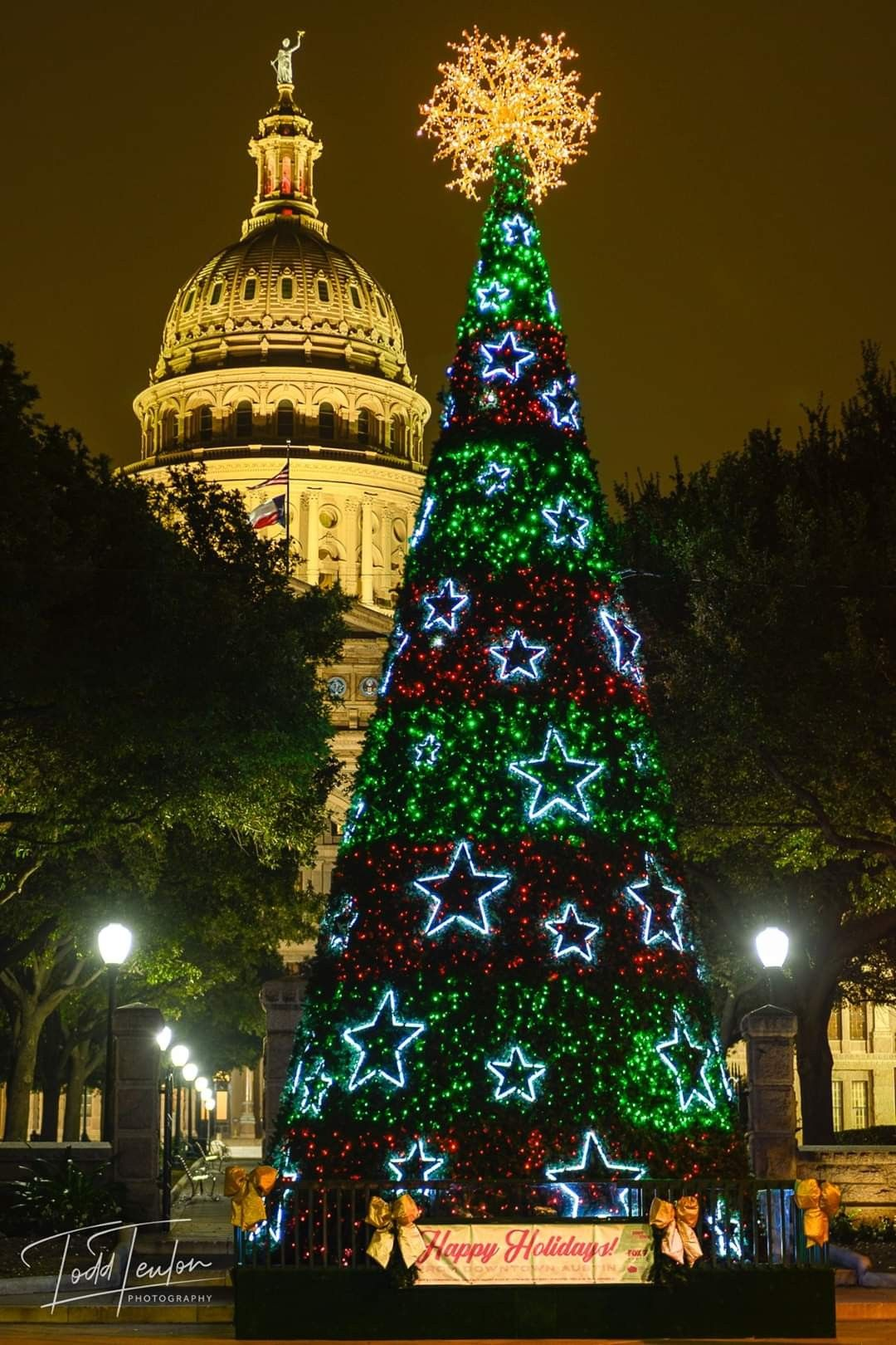 Austin Texas | Holiday decor, Christmas, Christmas tree