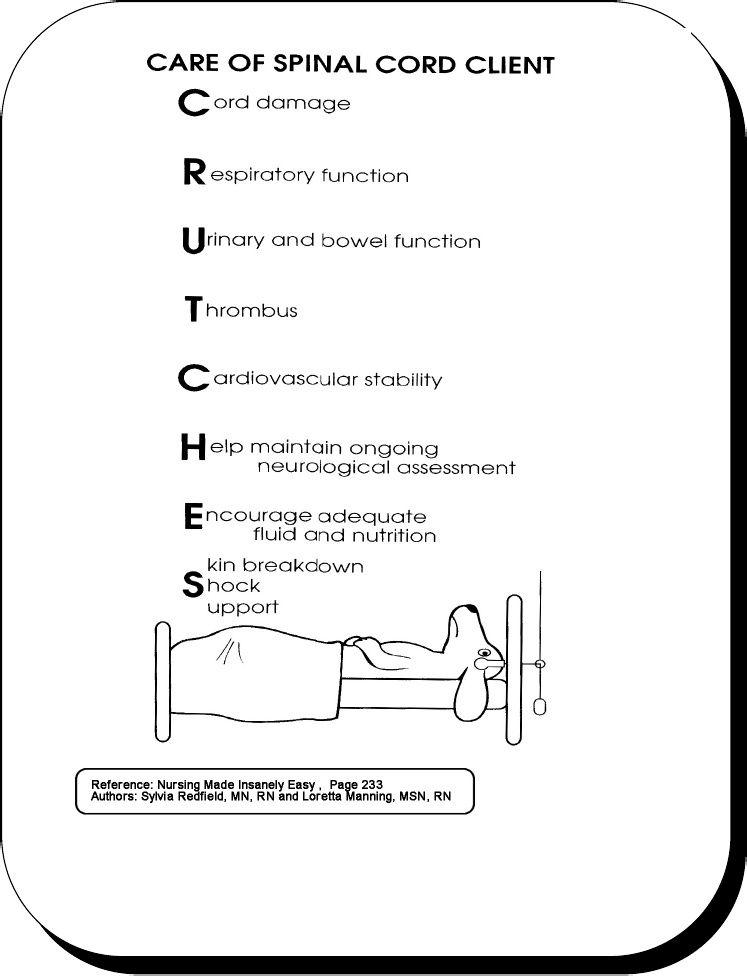 Spinal Cord Nurse Nurse Nurse Med Surg Nursing