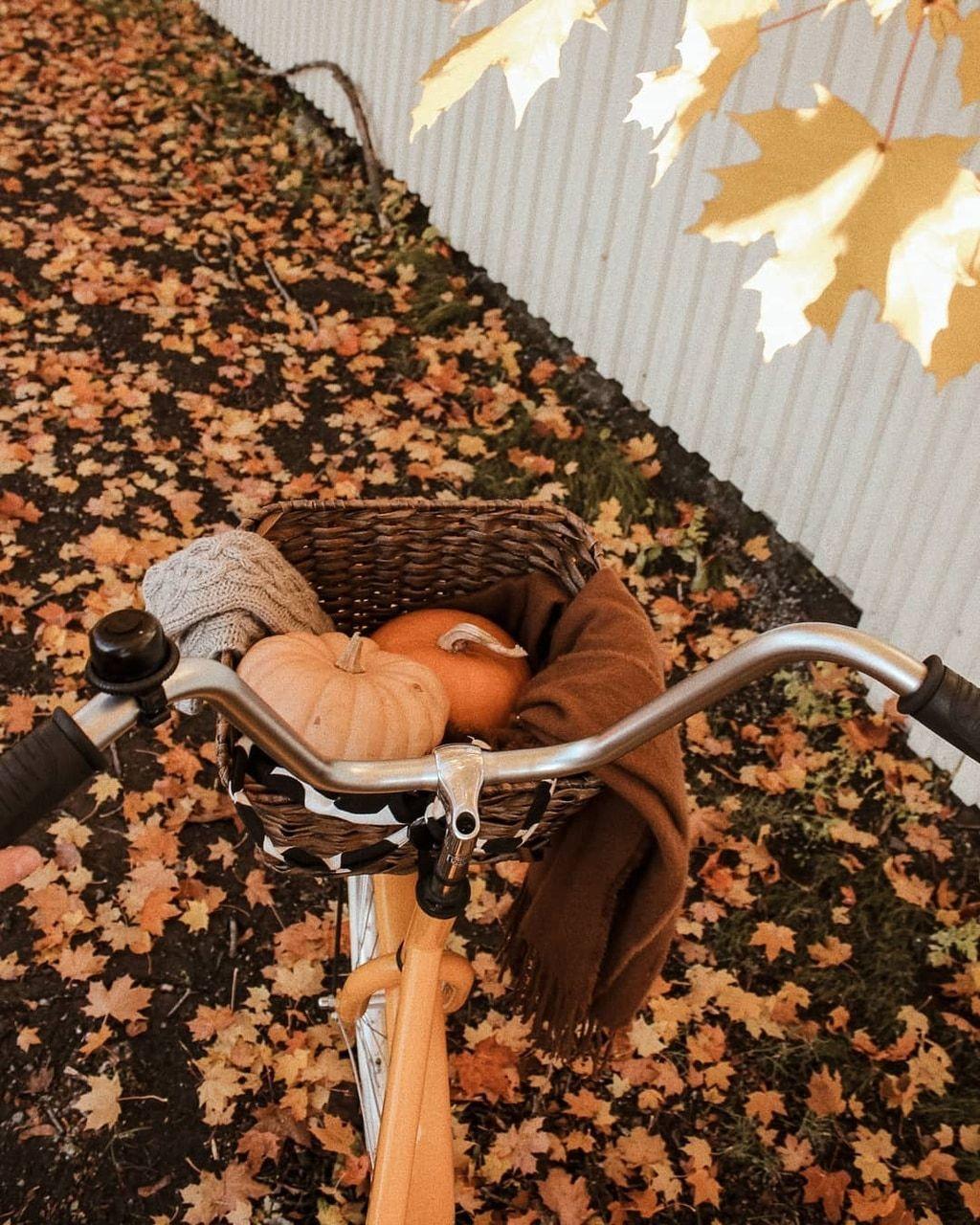 "pumpkinwishbones:"" autumncozy:""By annasofiapark""🍁🍎🌽 autumn/halloween all year 🎃🍂👻"""