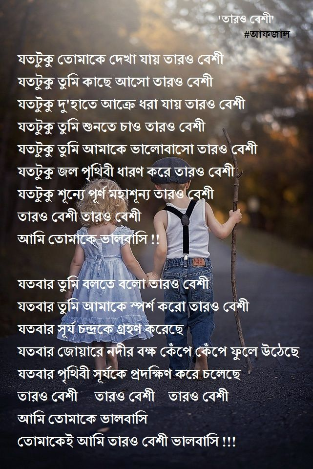 তারও বেশি - কবিতা | poem of bangla | Bangla