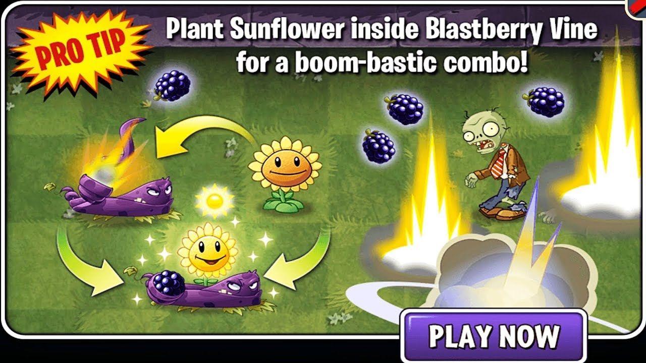 Plants Sunflower Inside Blastberry Vine For A Boom Bastic Combo Plants V Plants Vs Zombies Vines Sunflower