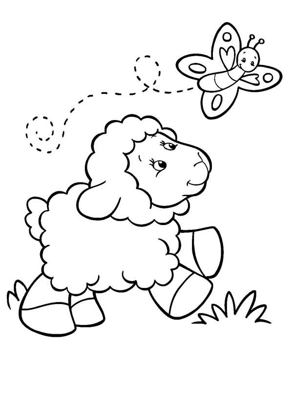 Baby Sheep Following A Butterfly Coloring Page Coloring Sky Butterfly Coloring Page Farm Coloring Pages Free Coloring Pages