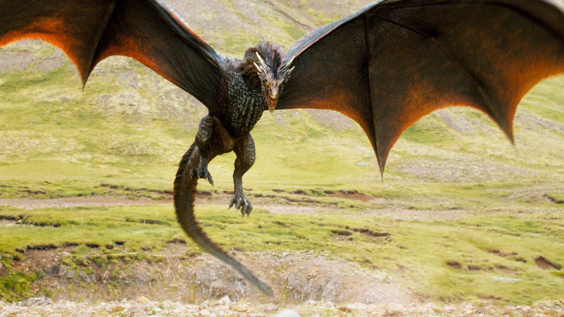 Game Of Thrones Dragon Wallpaper Game Of Thrones Dragons Game