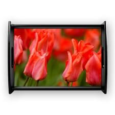 Popping red tulips to decorate your home in time for spring. Great gift for gardeners.