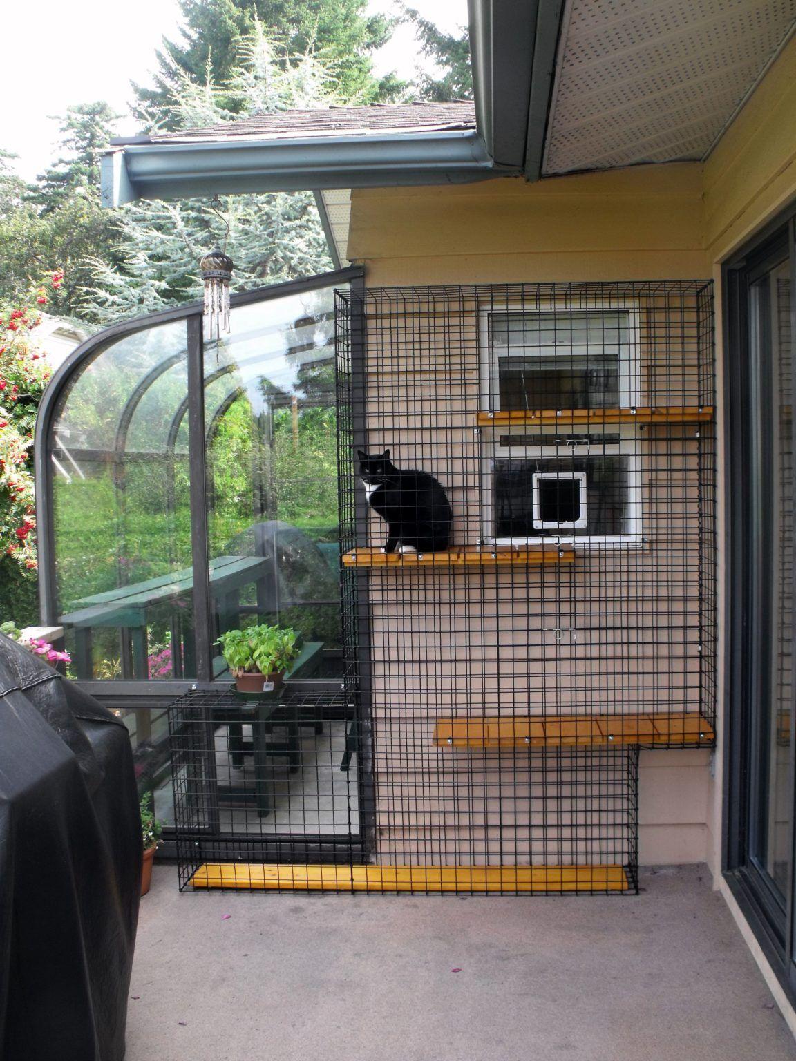 Catio Spaces, Cat Enclosures, Cat Runs, Catios in 2020