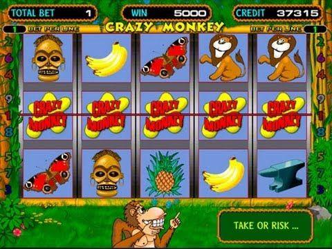 Игровые автоматы обезьяны онлайн игровые аппараты игра island скачать бесплатно