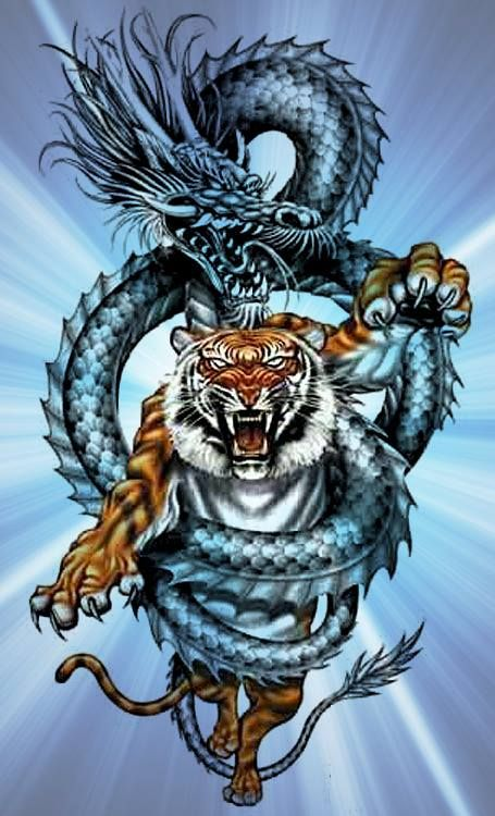 Pin by Shawn Thompson on Dragons | Tribal dragon tattoos ...