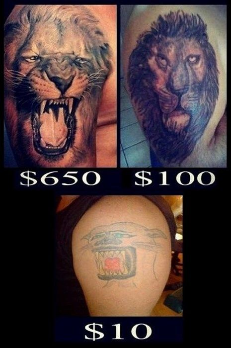 Cheap Can Be Expensive Too Ugly Roar Lion Leon Feo Tattoofail