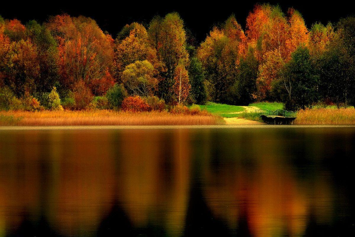 Autumn by **  REgiNA  **  on 500px