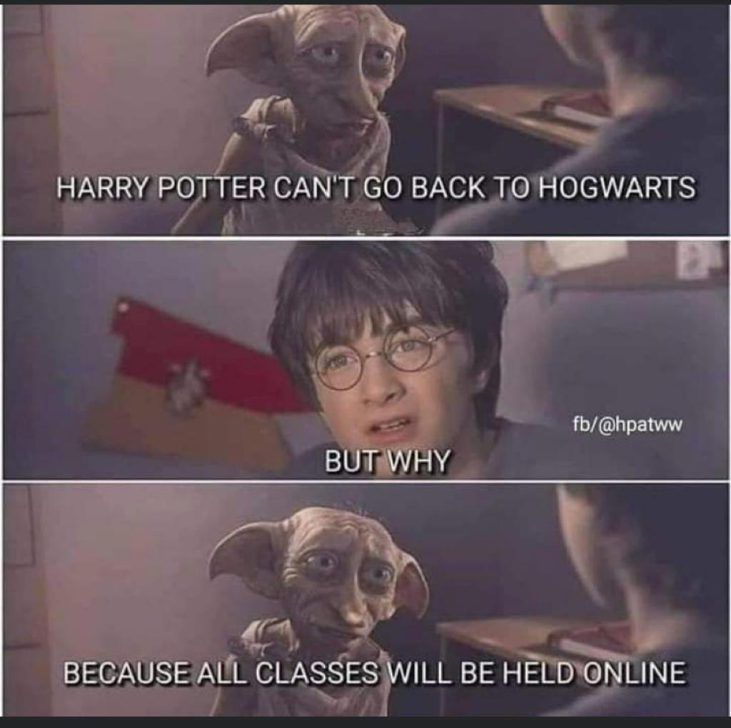 Harry Potter Dobby In 2020 Funny Harry Potter Jokes Harry Potter Jokes Harry Potter Memes Hilarious