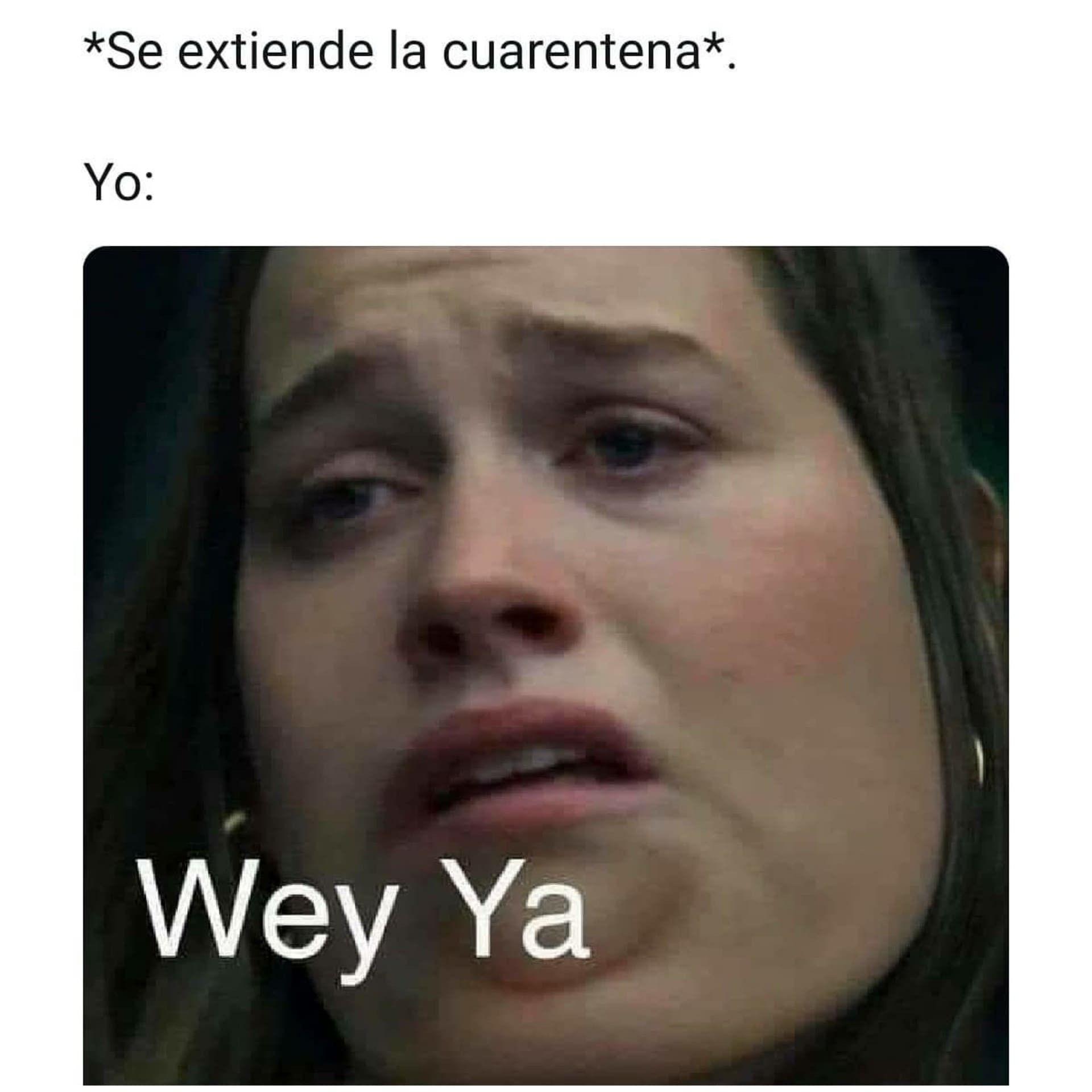 Memes De Parejas En Cuarentena