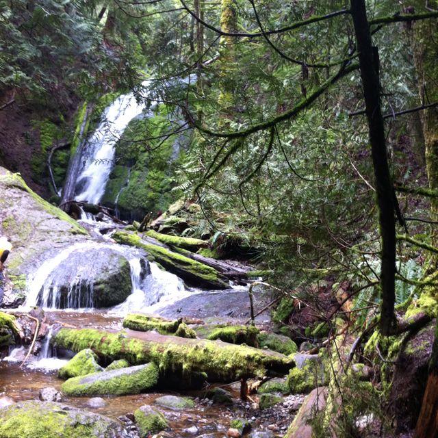 Cougar Mt. Waterfall