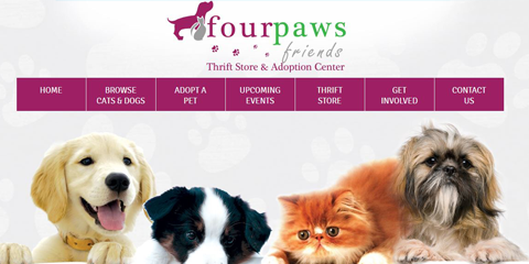 Website For Four Paws Friends Thrift Store And Pet Adoption Center In Coshocton Ohio Www Fourpawsfriends Pet Adoption Center Coshocton Marketing Essentials