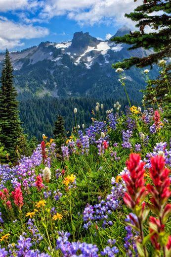 National Geographic Education Soobshestvo Google Beautiful Photos Of Nature Beautiful Nature Beautiful Landscapes