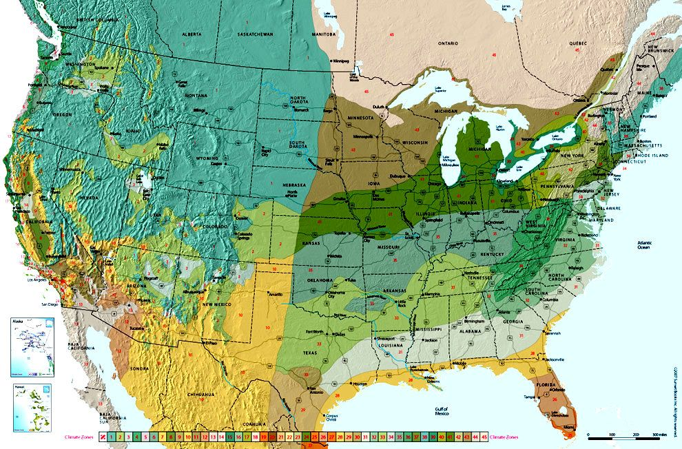 USA Climate Zones for Planting Seeds and