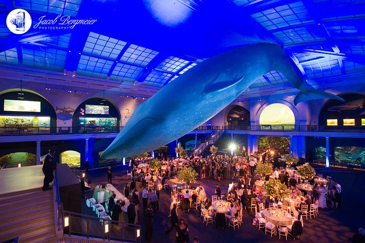 American Museum Of Natural History Nyc If I Was The Kind Person To Have A Extravagant Wedding Would Do Something Like This