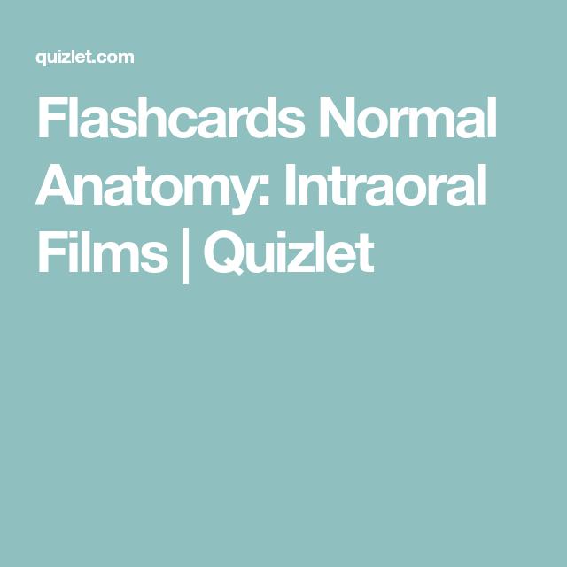 Flashcards Normal Anatomy Intraoral Films Quizlet Flashcards Intraoral Anatomy