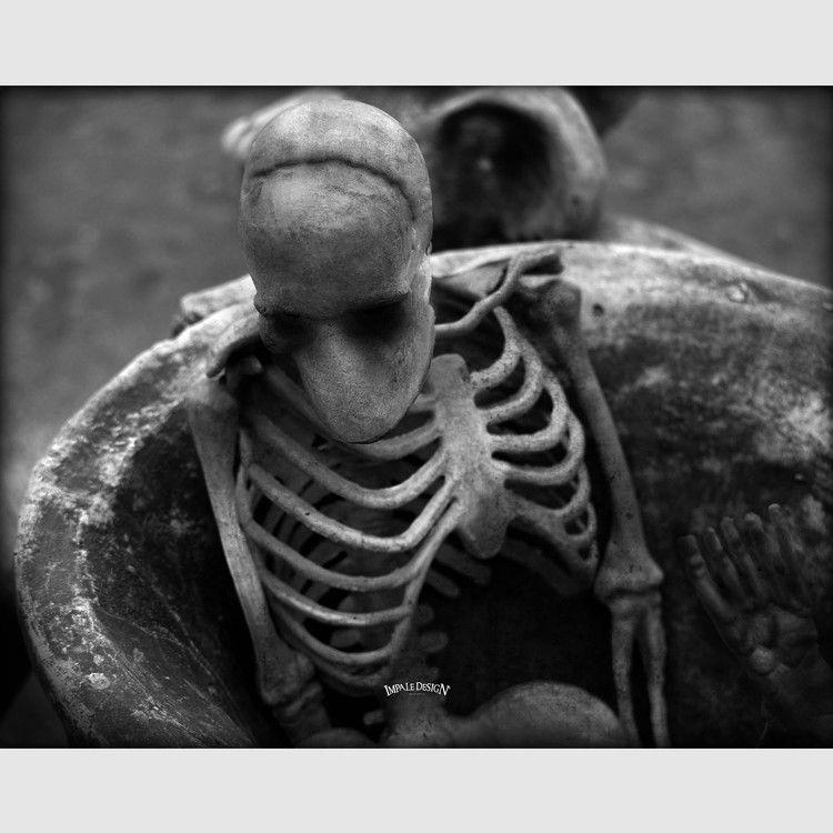 Bones Prints Dark Art Bones