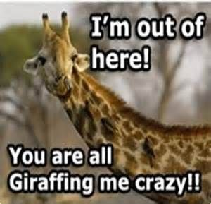 giraffe jokes - - Yahoo Image Search Results | funny ...
