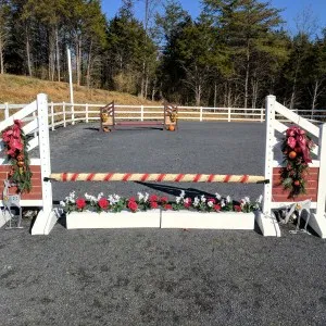 Facilities Horseback riding lessons, Cross country jumps