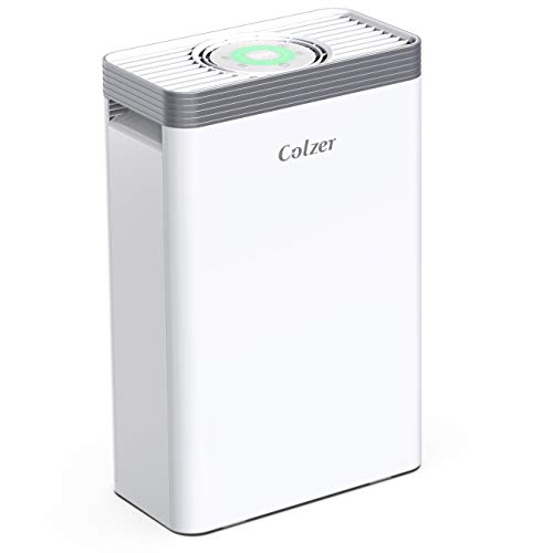 Colzer Air Purifier With True Hepa Air Filter Air Purifier For Bedroom Best Offer Ineedthebestoffer Com In 2020 Hepa Air Filter Hepa Air Hepa Air Purifier