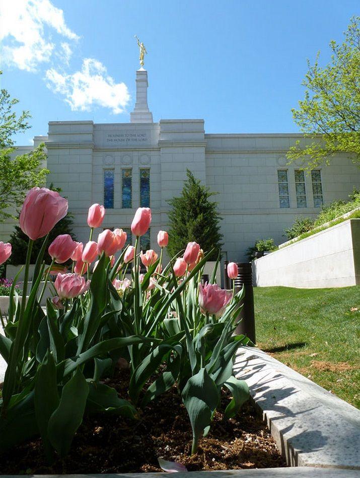 Winter Quarters Nebraska Temple & pink tulips. #LDS #Mormon | Winter ...