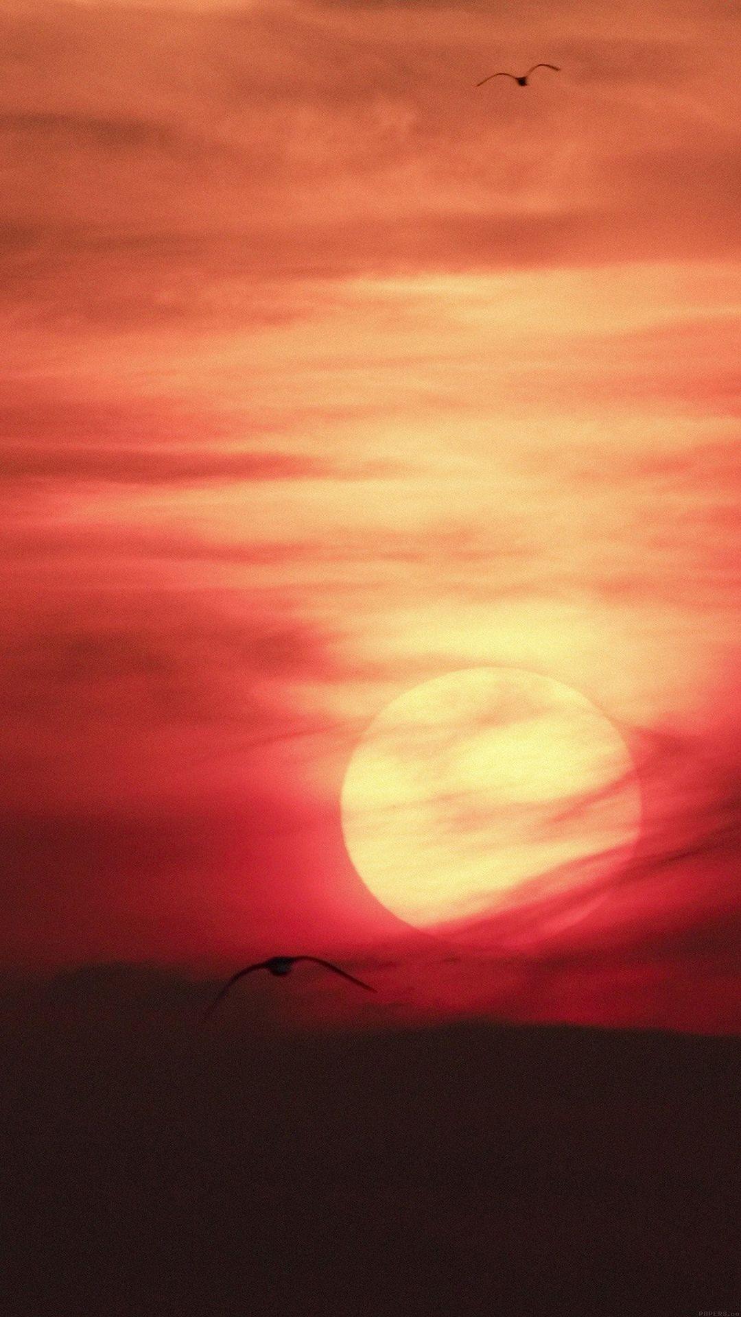 Artistic Red Sunset Desert IPhone 6 Plus Wallpaper