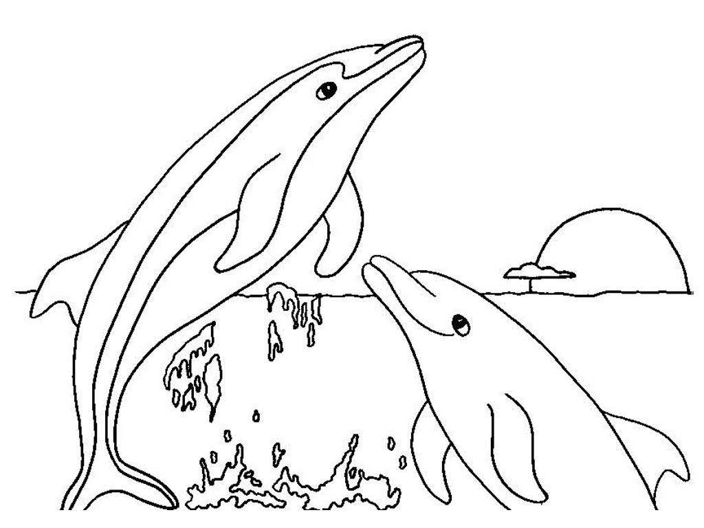 Free Printable Dolphin Coloring Pages For Kids Dolphin Coloring
