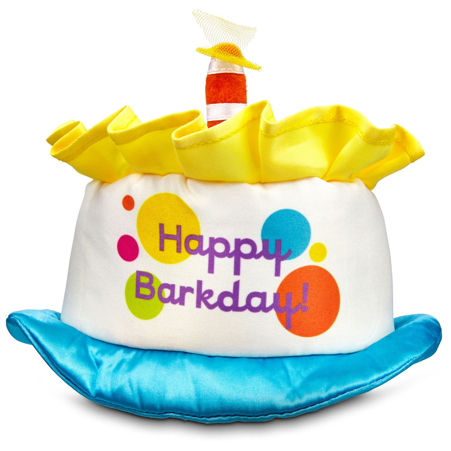 Petco Special Occasions Birthday Cake Dog Hat | Coco Puff | Birthday ...