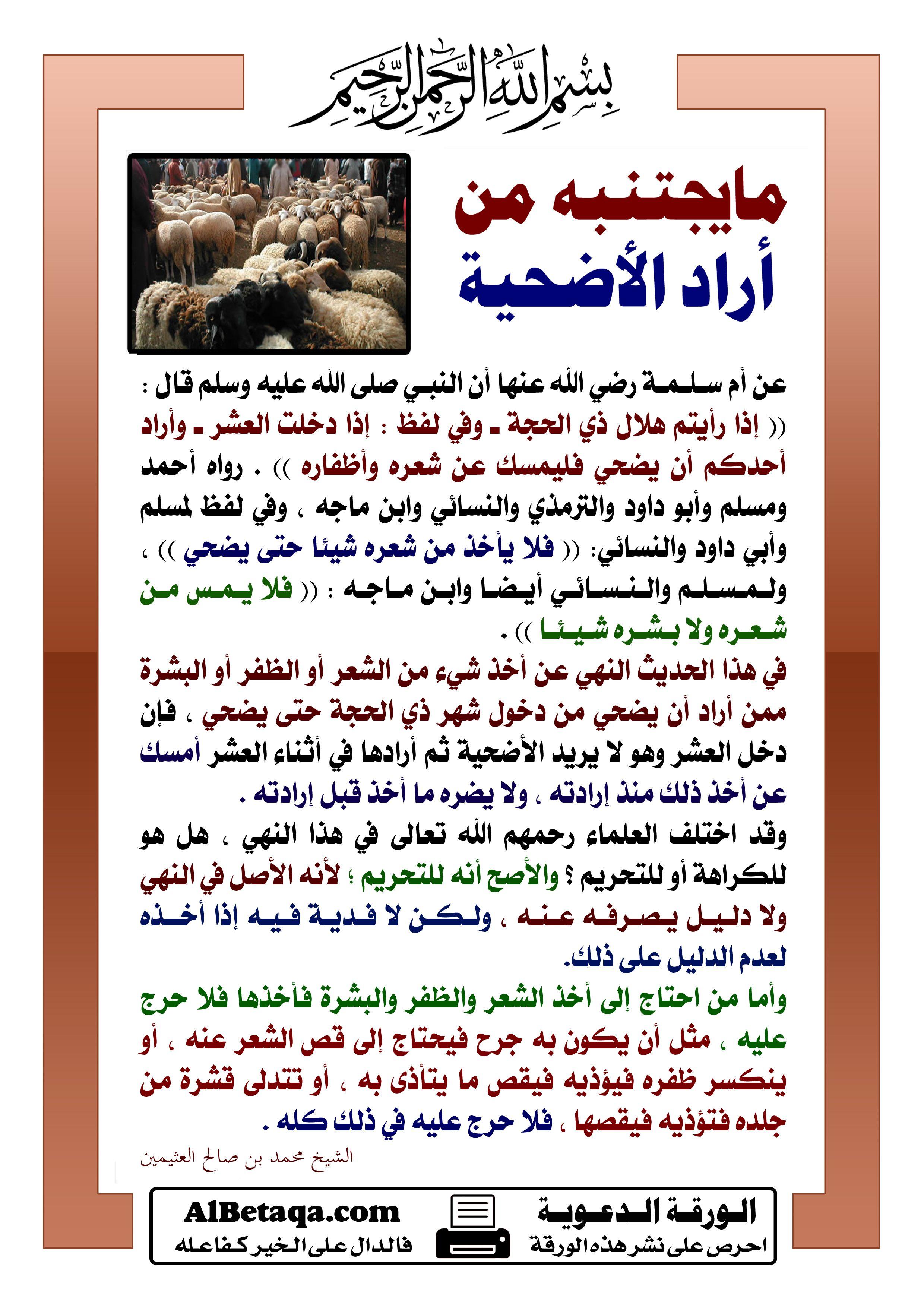 فضائل فوائد أحكام عشرة ذي الحجة والحج ويوم عرفة والأضحية Islam Islamic Qoutes Qoutes