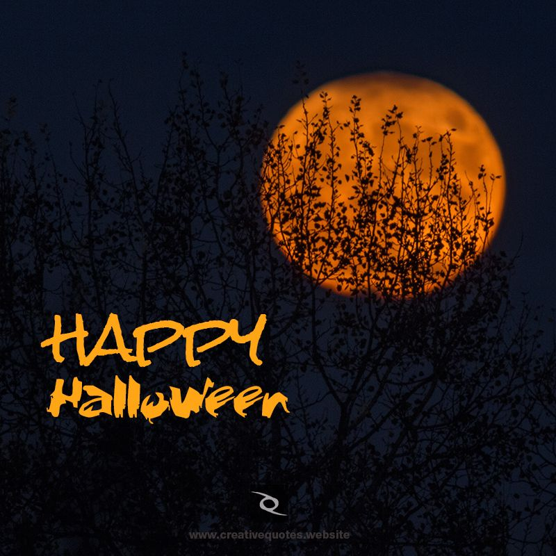 Bewitching Halloween Greetings, Fun Halloween Quotes ...